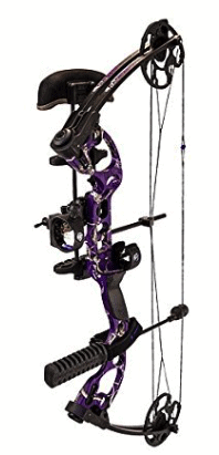 Ranking the 10 Best Compound Bows