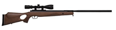best air rifle - Benjamin Trail NP XL 1100 Break Barrel .22-Caliber Air Rifle
